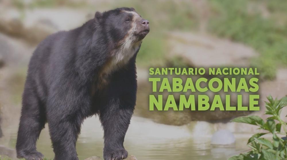 WWF - Santuario Nacional Tabaconas Namballe